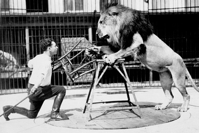 The Lion Tamer Who Survived